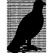 Bird 144 Graphic