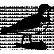 Bird 148 Graphic