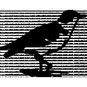 Bird 150 Graphic
