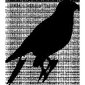 Bird 155 Graphic