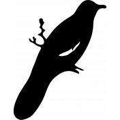 Bird 161 Graphic
