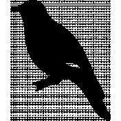 Bird 163 Graphic
