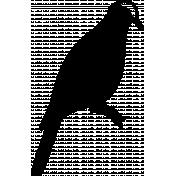 Bird 164 Graphic