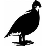 Bird 167 Graphic