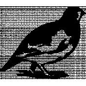 Bird 171 Graphic