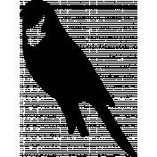 Bird 193 Graphic
