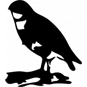 Bird 204 Graphic