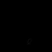 Bird 212 Graphic
