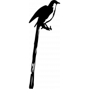 Bird 226 Graphic
