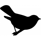 Bird 230 Graphic