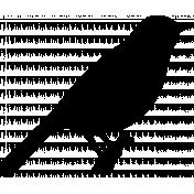 Bird 234 Graphic