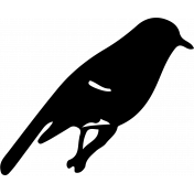 Bird 235 Graphic