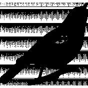 Bird 236 Graphic