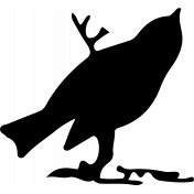 Bird 238 Graphic