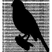 Bird 246 Graphic