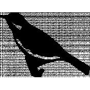 Bird 247 Graphic
