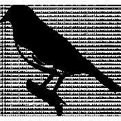 Bird 251 Graphic