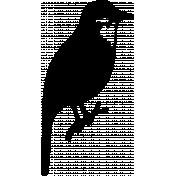 Bird 258 Graphic