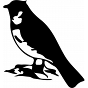 Bird 259 Graphic