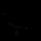 Bird 260 Graphic