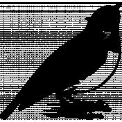 Bird 262 Graphic