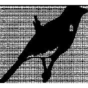 Bird 264 Graphic