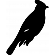 Bird 265 Graphic