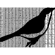 Bird 267 Graphic