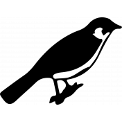 Bird 270 Graphic