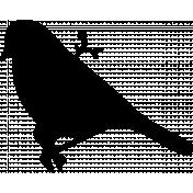 Bird 273 Graphic