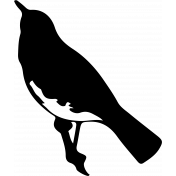 Bird 274 Graphic