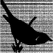 Bird 278 Graphic