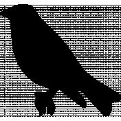 Bird 280 Graphic