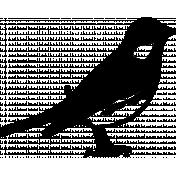 Bird 282 Graphic