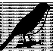 Bird 287 Graphic
