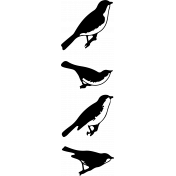 Bird 288 Graphic