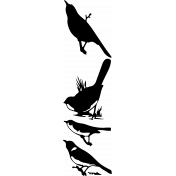 Bird 297 Graphic