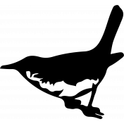 Bird 298 Graphic