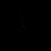Bird 302 Graphic
