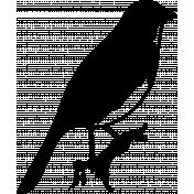 Bird 305 Graphic