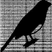 Bird 312 Graphic