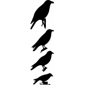 Bird 313 Graphic