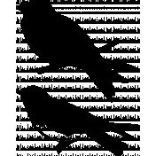Bird 320 Graphic