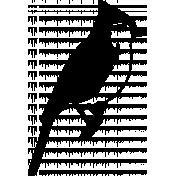 Bird 326 Graphic