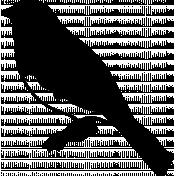 Bird 328 Graphic