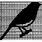 Bird 329 Graphic