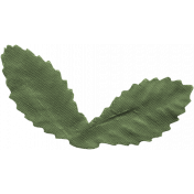England Leaf 025