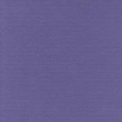 Presence Solid Paper Purple3