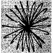 Presence Flower Stamp 3