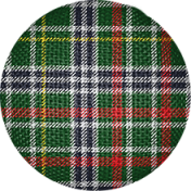 Scotland Brad Plaid 2